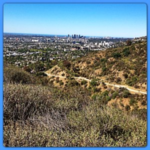 The main path at Runyon Canyon.