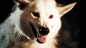 thrones-wolf