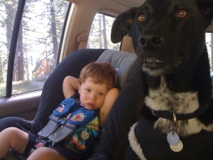 Buckle up all your babies!